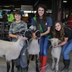 Top 10 reasons to attend the Johnson County Fair