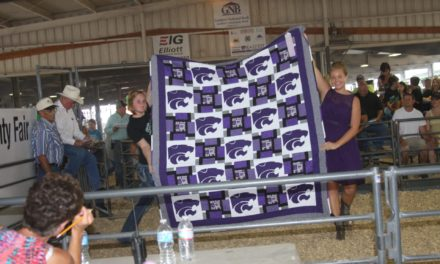 Gunkel auctions quilts at Project Auction at annual Jo Co Fair