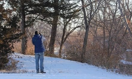 Winter weather provides birding opportunities