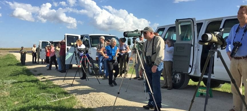 2017 birding festival returns to Great Bend