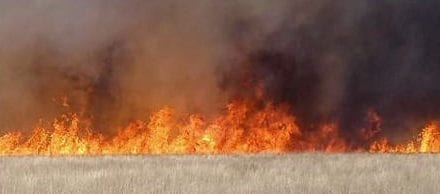 Wildfire prevention necessary in dry winter; please use caution