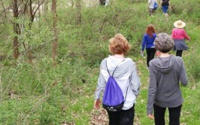 Nature walk infuses mind, body and spirit